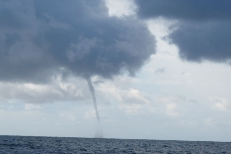 Waterspout off Dee Why Beach, Sydney, 19 Feb 2013 (Image: Christopher Wright)