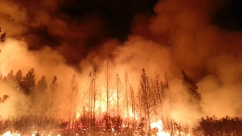 One of the faces of a warming planet - The Rim Fire, California, August, 2013 (Image: U.S. Forest Service)