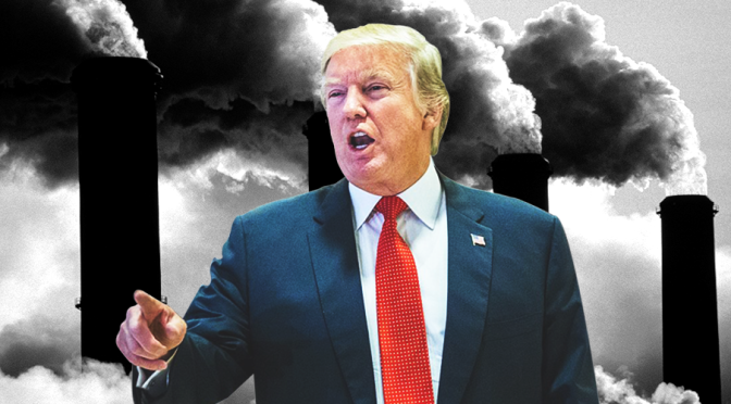 What if? Trump's environmental legacy in 2019